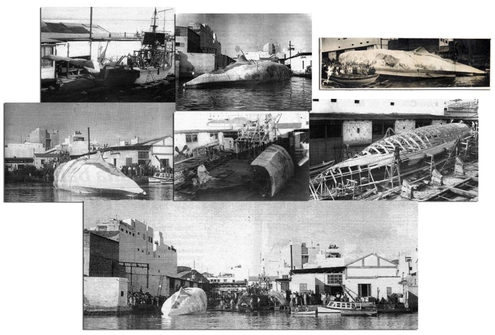 Rodaje en Canarias de Moby Dick (John Huston, 1956): Un insuperable regalo de Navidad (5/6)