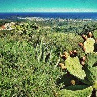 Las Palmas de Gran Canaria, desde lo más alto de La Milagrosa.