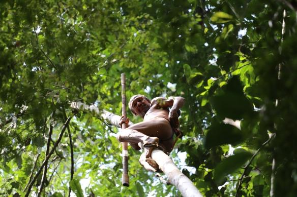 Guerrero waorani con cerbatana a la caza de monos en la selva. / MANUEL CARDENAL